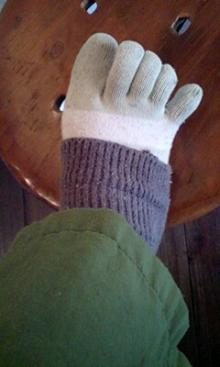 ワイガーデンのブログ-ドリーの五本指
